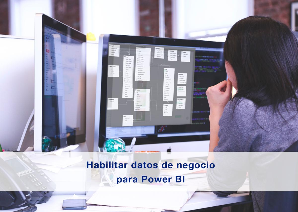 Habilitar los datos de negocio para Power BI